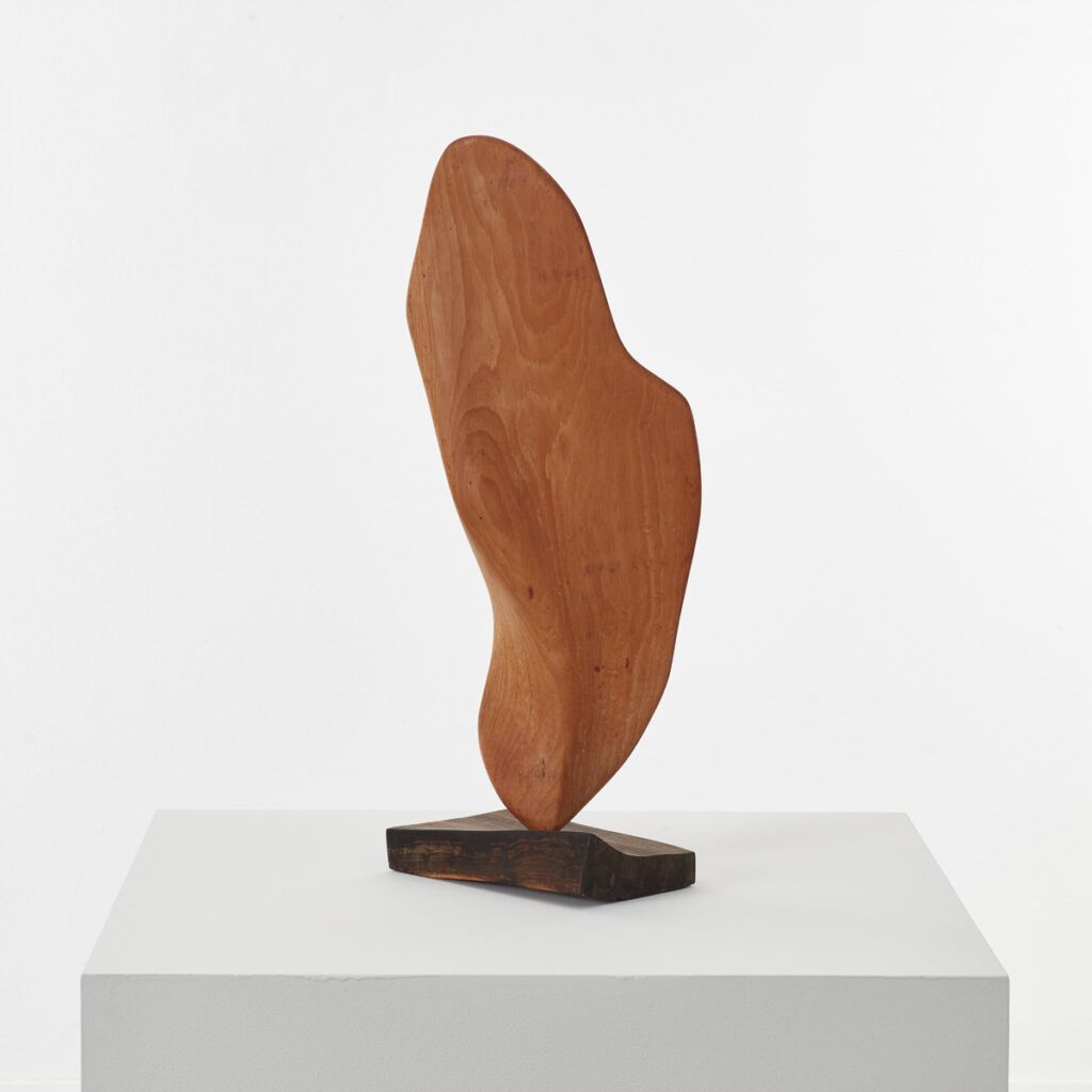 Large biomorphic wood sculpture